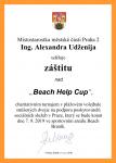bhc-2019-zastita-udzenija-P2.png